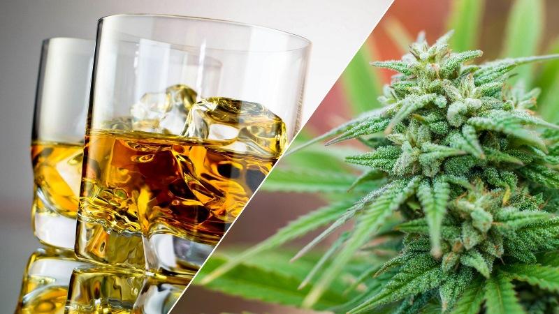 Алкоголь или марихуана - что опасней для подростков?