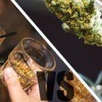 Опасность марихуаны и алкоголя